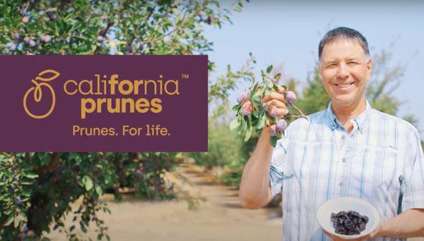 Prugne Della California.jpg
