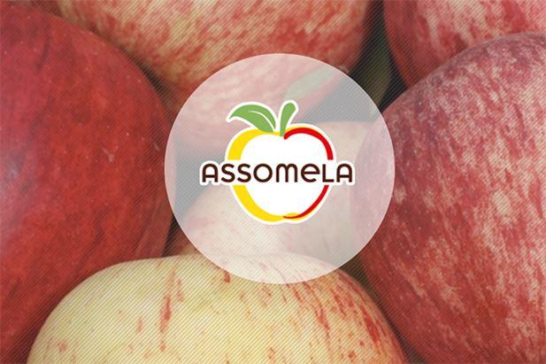 Assomela-logo.jpg