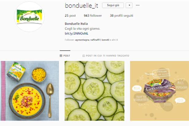 Bonduelle-Instagram-screenshot.jpg