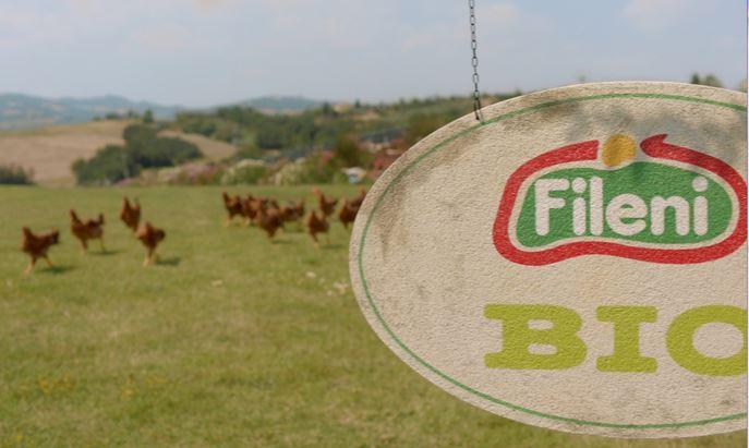 frame_logo.jpg