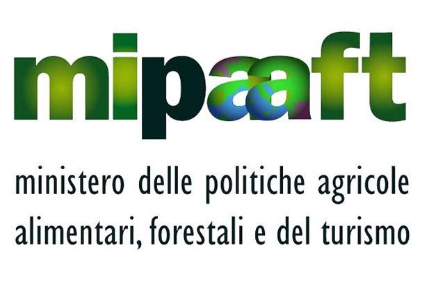 mipaaft-logo.jpg