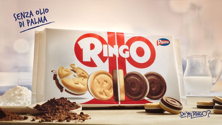 Ringo_1.jpg