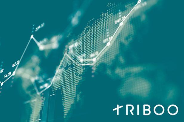 triboo.jpg