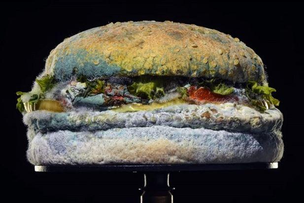 burgerking-panino-ammuffito.jpg