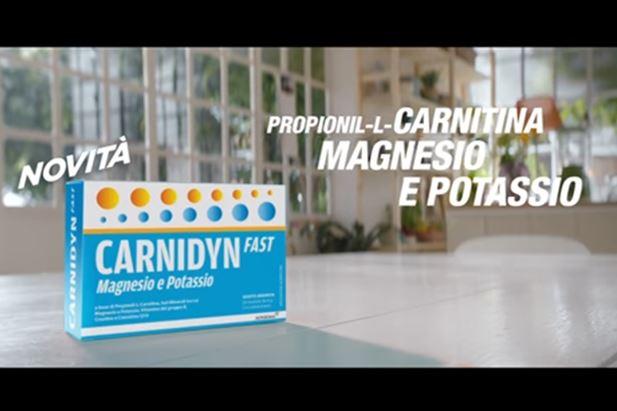 carnidyn.jpg