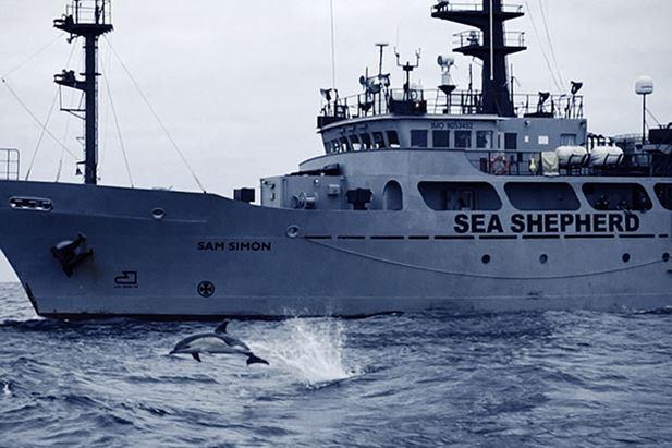 Sea-Shepherd-VMLYR.jpg