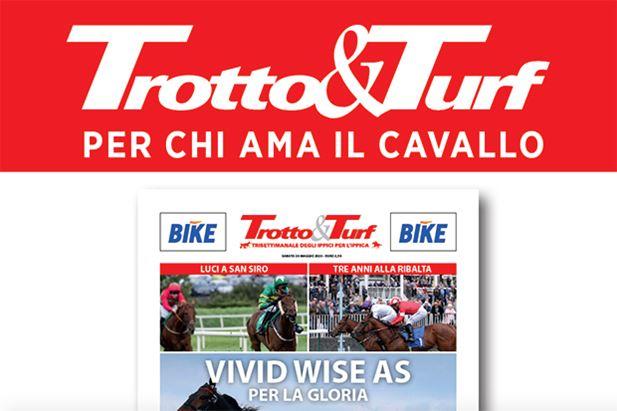trotto-turf.jpg