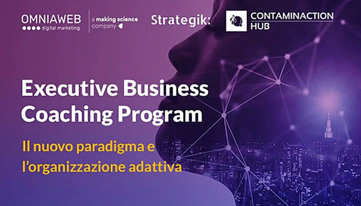 Omniaweb-Executive-Business-Coaching-Program.jpg