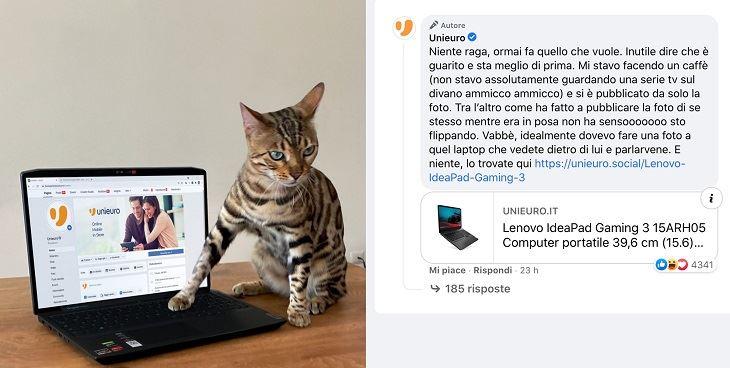 UNIEURO_GATTO.jpg