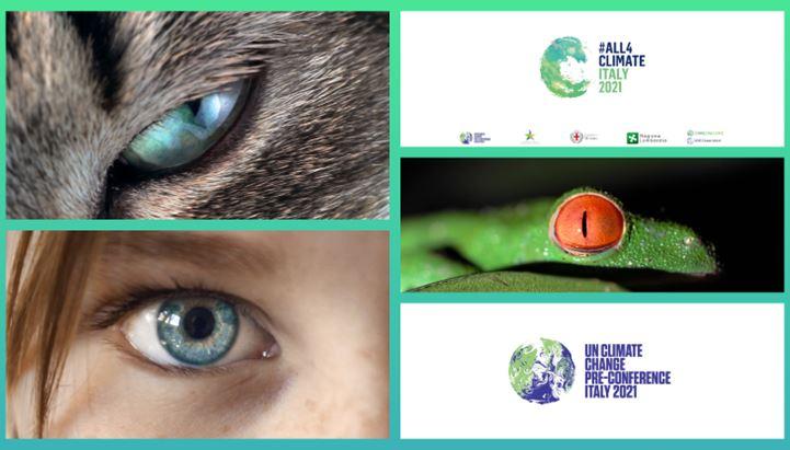 """Alcune immagini della campagna """"The world is Watching"""""""